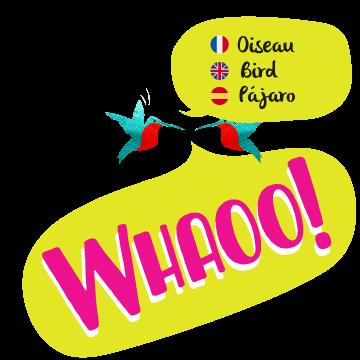 Whaoo Logo Hover